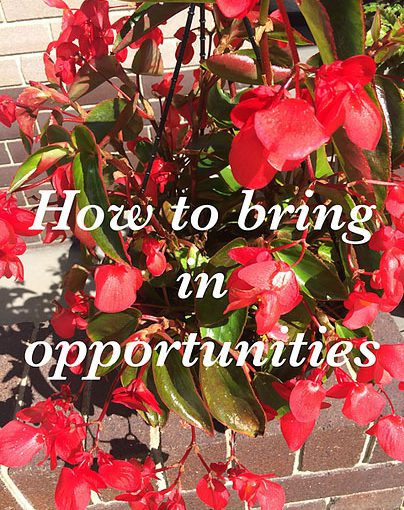 New opportunities are at the doorstep!